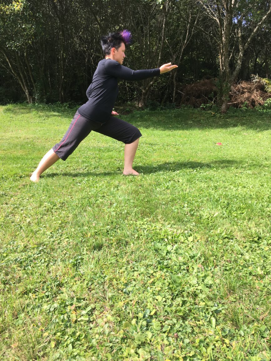 Kung Fu Bagua Zhang posture céleste du coq d'or