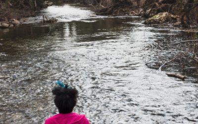 Ma nouvelle vie au bord de la rivière…